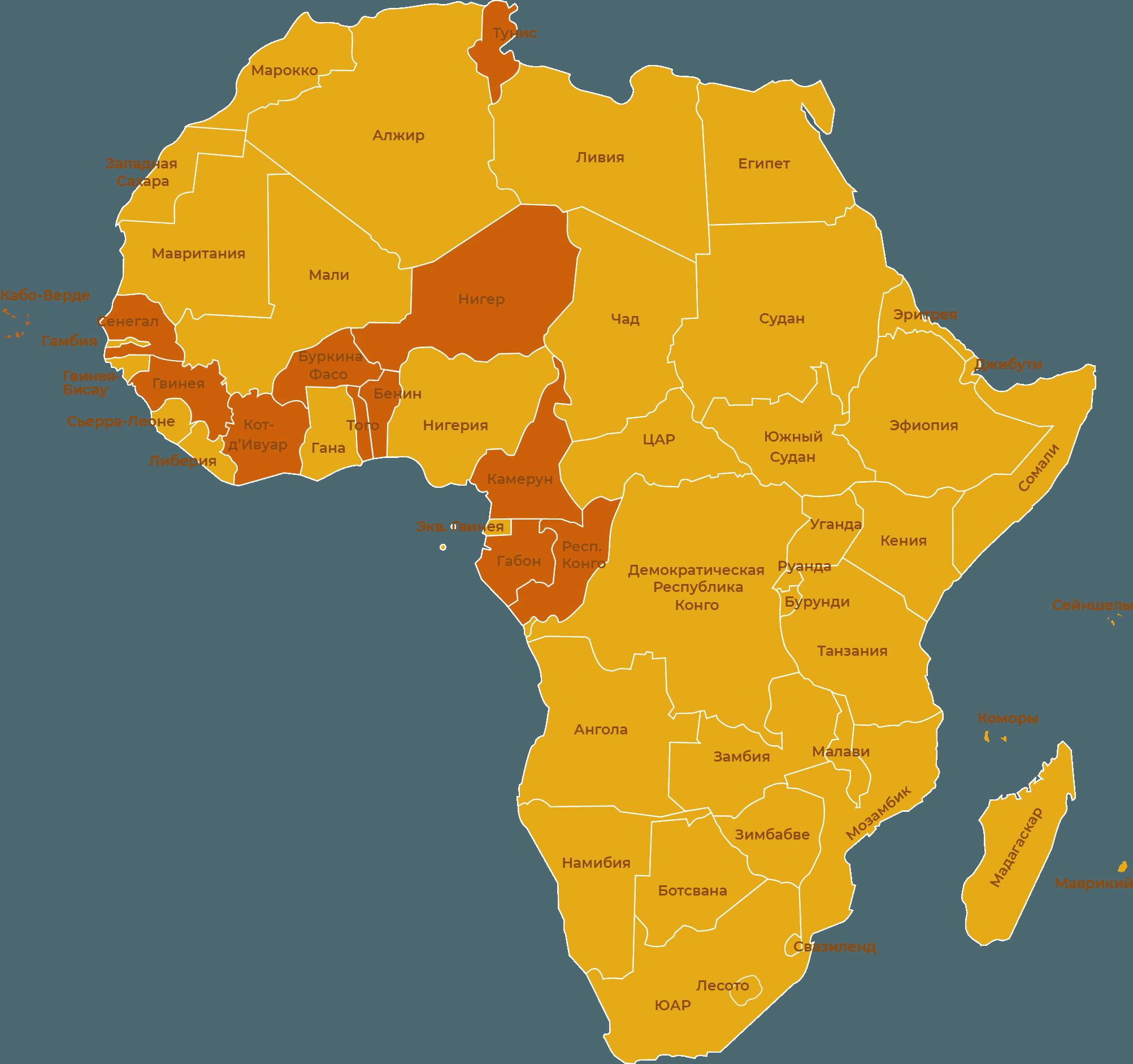 «Панафриканский проект» предусматривает создание региональных отделений движения Кеми Себа по всему континенту, сегодня Urpanaf представлена в 12 странах.