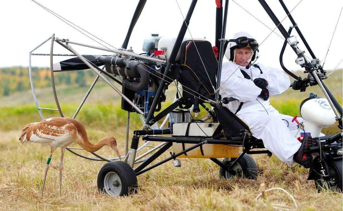 Владимир Путин принимает участие вэкологическом проекте Полёт надежды, 2012год